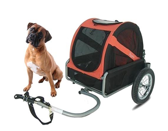 Location de remorque à vélo pour chien sur l'ile d'Oléron 6 Vélos 17 Loisirs